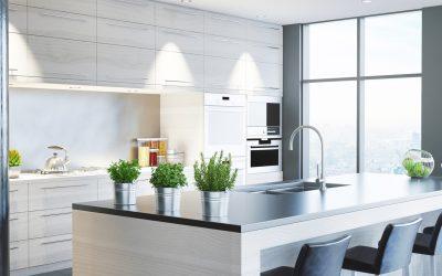 Saubere Sache:  Küchenhygiene in der heißen Jahreszeit